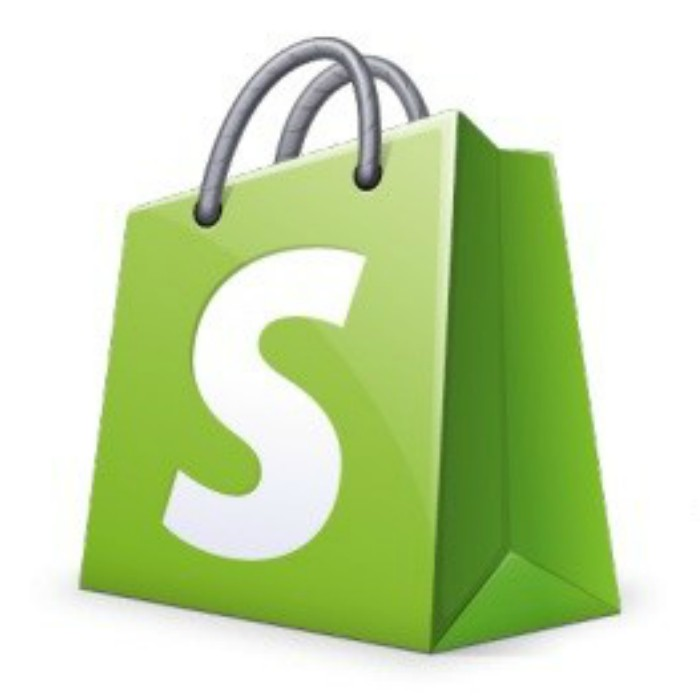 Shopify DropShipping, From $0 To $10,000 in 24 hours?